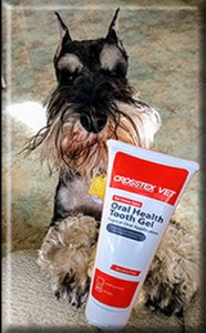Crosstex Vet Oral Tooth Gel
